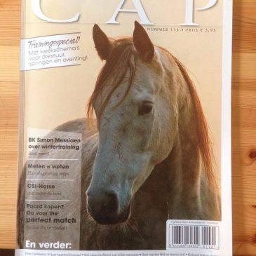 Artikel in de Cap 2013