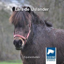 Boek Lars de IJslander