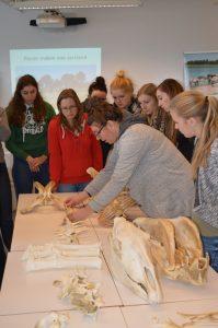 Interactive lezing @ Zandbergen 9506 Geraardsbergen, België