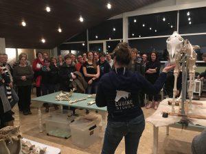 Anatomie en Biomechanica Combi @ Geraldine van der Venne
