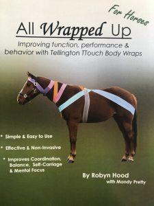 Verbeter de Balans, Coördinatie en Proprioceptie met TTouch Bodywraps @ Equinestudies