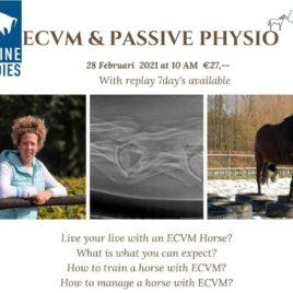 ECVM and Passive Physio